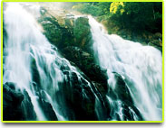 Meenmutty Water Fall